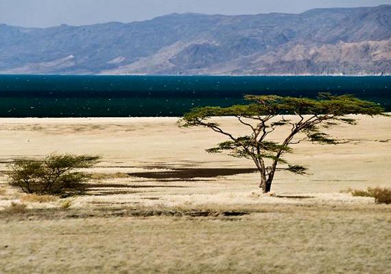 Teleki Sámuel a Kenya északi részébe induló első európai expedíció vezetője volt. Ő fedezte fel és nevezte el az akkori trónörökösről a Rudolf-tavat.
