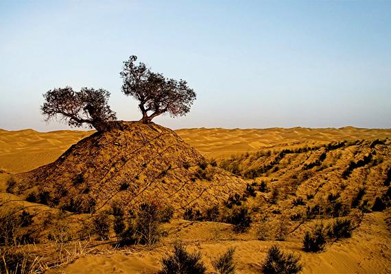 Stein Aurél első expedíciója során fedezte és tárta fel a Takla-Makán sivatag déli peremét és annak romvárosait.