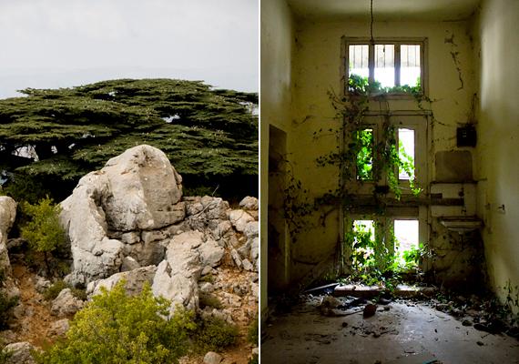 A keresztény-drúz konfliktus az 1860-as évek óta tart Libanonban, mikor is utóbbiak keresztények ezreit ölték meg. Bár bizonyos közösségekben, például ebben a faluban is megpróbáltak békésen együtt élni, a sebek túl mélyek voltak ahhoz, hogy a gyűlölet vagy a félelem ne lett volna képes a felszínre törni.
