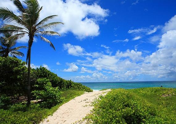 A korallzátonyokkal övezett Barbados igazi trópusi éghajlatú sziget, a hőmérséklet sohasem esik 20°C alá.