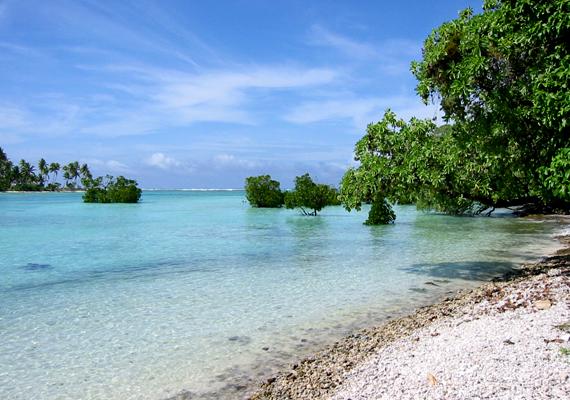 Kiribati érdekessége, hogy itt található a világ legnagyobb természetvédelmi területe.