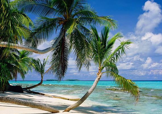A Hawaii és Ausztrália között fekvő Tuvalut négy sziget és öt meseszép korallzátony alkotja.