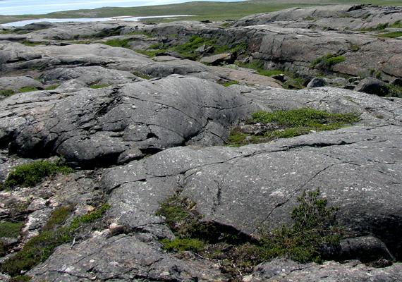 Nagyon ritka, hogy kutatók hasonló jelenségre bukkanjanak, ugyanis a kőzetlemezek mozgása miatt a földfelszín ősi rétegei újra a föld mélyére kerültek, bár hasonló okok miatt akár elő is bukkanhatnak.