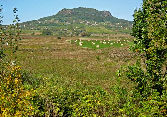 A Balaton-felvidéket a tanúhegyek látványa teszi igazán különlegessé, melyek egy ősi, letűnt korról mesélnek.
