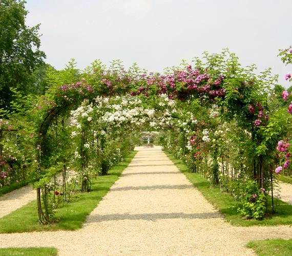 Val-de-Marne rózsakertje Párizstól nyolc kilométerre található. Több mint 3200 különféle rózsának ad otthont.
