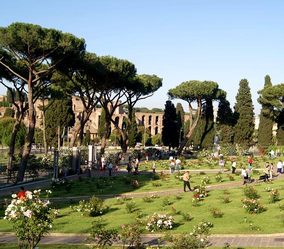 Róma rózsakertje a város szívében üde színfoltot, egyúttal természeti és történelmi nevezetességet jelent.