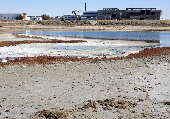 Bár a Kokaral-gát 2005-ös megépítése óta javult a helyzet északon, sokan úgy vélik, ez édeskevés ahhoz, hogy megmentsék a tavat.