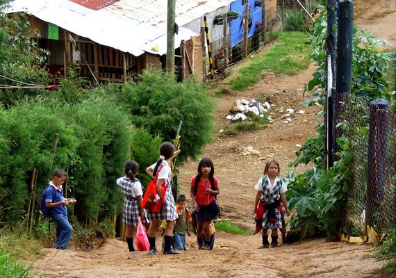 A természeti szépségekben gazdag Kolumbia többek között a gyerekrablások, a gyilkosságok, az autóba rejtett pokolgépek, valamint a drogkereskedelem miatt számít veszélyes országnak.