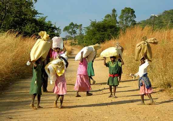 A Viktória-vízesés gyönyörű, azonban nem árt meggondolni a Zimbabwéba való kiutazást. A gazdaság hanyatlása miatt ugyanis egyre növekszik a bűnözés az utcákon: a turisták kifosztása és zaklatása rendszeressé vált.