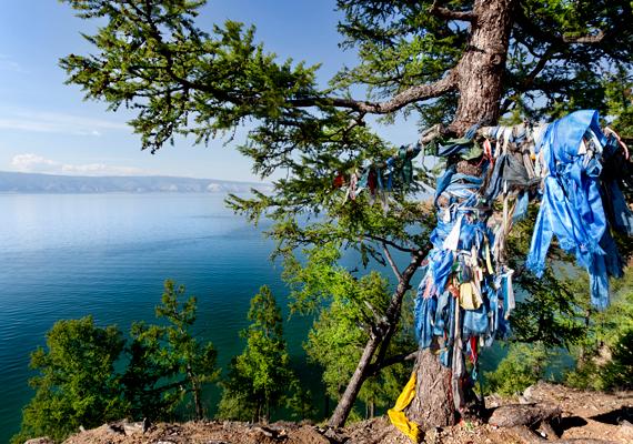 Sámánfa a tó szívének számító Olhon-szigeten.