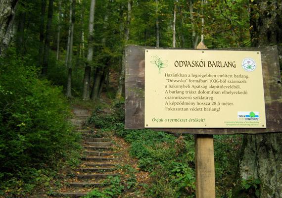 Bakonybéltől mindössze néhány kilométerre található az Odvaskői-barlang, melyhez a Boroszlán Tanösvényen lehet eljutni. Ahogy a képen látható tábla is jelzi, ez hazánk legrégebben említett barlangja, nevét már 1036-ban írásba foglalták. A háttérben látható lépcső vezet el hozzá.