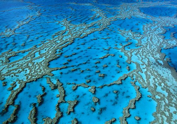 A Nagy-Korallzátony az egyik legveszélyeztetettebb hely a bolygón. Kattints ide a nagy felbontású képért!