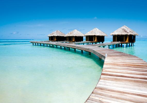 A Maldív-szigeteken található Diva Resort a Dhidhoofinolhu korallzátony szomszédságában épült fel. Üzemeltetői gyorsan felismerték, hogy a táj szépségét csak proaktív környezetkímélő programok segítségével lehet fenntartani.