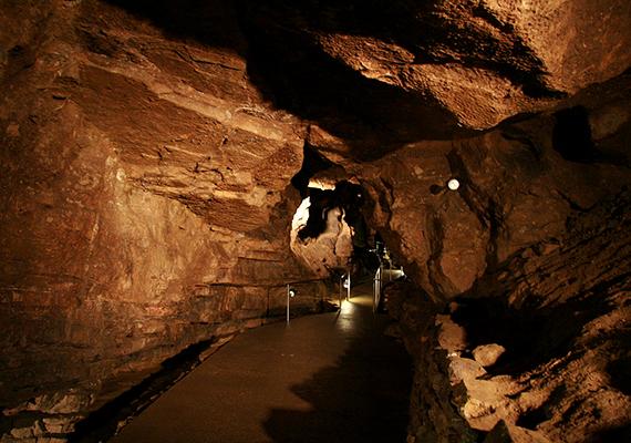 A Denevérmúzeumáról is híres Abaliget barlangja a Mecsek leghosszabb patakos barlangja, amely szintén 1982 óta számít fokozottan védett természeti értéknek. Vezetett túrák keretében egy 466 méteres kiépített szakaszon látogatható is. Ha többet szeretnél tudni róla, kattints ide!