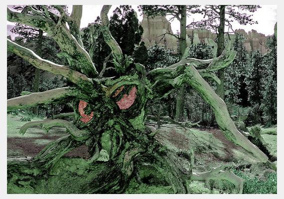 Ez a polipszerű, félelmetes fa az amerikai, Utah állambeli Bryce Canyon Nemzeti Parkban található.