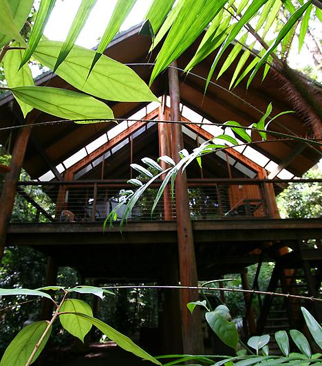 Rainforest Tree Houses, AusztráliaA luxus és a fáramászás ritkán fér össze, ám az ausztráliai Fur n' Feathers Rainforest Tree Houses elnevezésű hotelnek sikerült kombinálnia a kettőt. Az esőerdőben felépült, az Ithaca-folyóra néző gerendaház-együttes a vadvilág csendes megfigyelésére és a mindennapi stressz elűzésére egyaránt tökéletes lehetőséget biztosít.