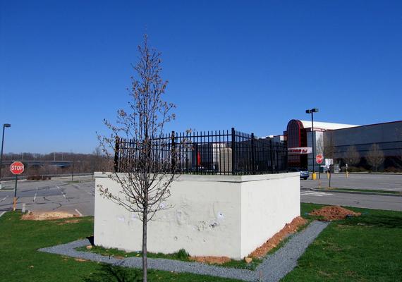 Bár nem egy bizarr ötletnek köszönhető, Mary Ellis parkoló közepén található sírja mára szintén turistalátványossággá vált. A nőt 1827-ben temették el családja birtokán, melyre azonban később mozi és bevásárlóközpont épült. A sírt azonban nem bolygatták meg.