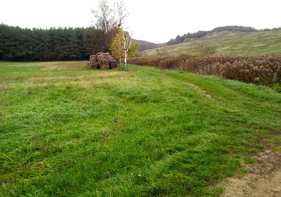Böde Zalaegerszegtől északnyugatra, 10-12 kilométerre található. Csendes és békés a táj, ami már önmagában is megnyugtató.