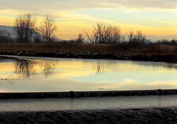 A tavat az Által-ér táplálja, utóbbi felduzzasztásának, illetve az itteni rét elárasztásának köszönheti létét. A képen az ér látható.