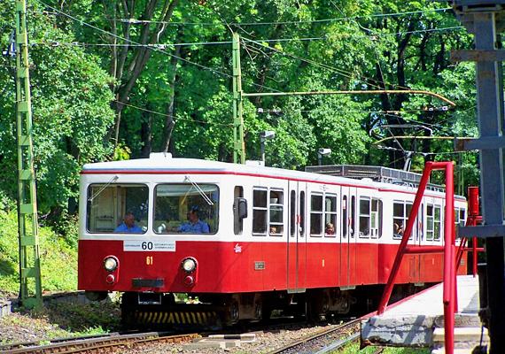 A kerület járműve a fogaskerekű, mely a Városmajortól a Széchenyi-hegyig közlekedik.
