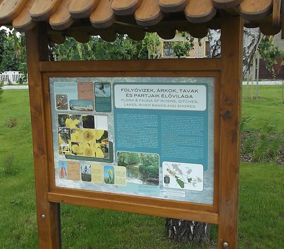 A tanösvényen elhelyezett többnyelvű táblák segítenek abban, hogy megismerd a környék élő- és növényvilágát.