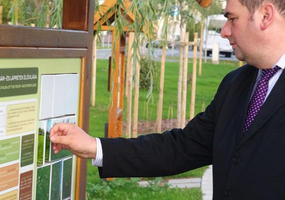 A Városháza közelében pedig egy tanösvényt hoztak létre, ahol interaktív táblák segítségével fedezheted fel a környék élővilágát. Németh Sándor szerint, aki 2010 óta Bük polgármestere, a folyamatos fejlesztéseknek és a lelkes helyi vendéglátóknak köszönhető, hogy a város egyre népszerűbb a külföldiek körében, de számukra legalább ennyire fontos, hogy a magyarok is felfedezzék maguknak a várost.