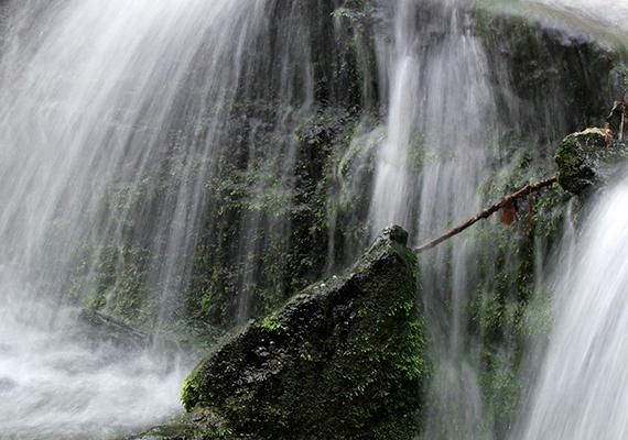 A természetes szökőkút vize tiszta, hideg karsztvizet jelent, amelyet meg is lehet inni.