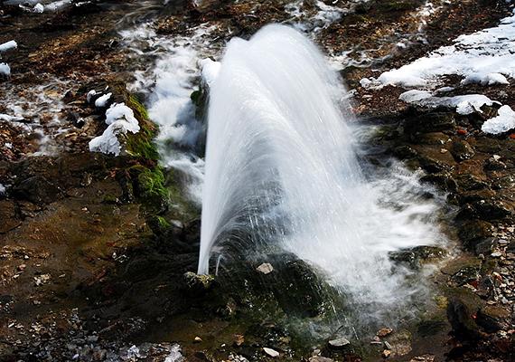 Volt olyan év, mikor csak a májusi esőzések biztosítottak bővebb vízhozamot, reménykedni azonban lehet benne, hogy egy kiadós esőzés után működésbe lépnek a bükki Felsőtárkánytól nem messze található források.