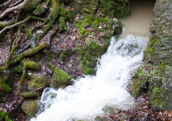 Bár az Imó-forrás szintén csodaszép látványt nyújt, működése ritkábban figyelhető meg. Vize - miután barlangját kitöltötte - nagyobb vízhozam esetén hatalmas robajjal tör a felszínre.