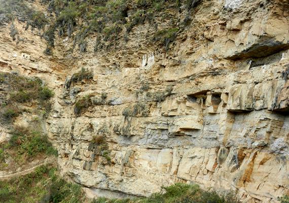 Bár készültek korábban is feljegyzések a helyiek által csak ősi bölcseknek nevezett alakokról, a kutatók csak a 19. században tudták megközelíteni őket. Feltételezéseik szerint a szarkofágok a 15. századból valók - ezt azóta a modern, radiokarbonos kormeghatározás is megerősítette -, illetve a Chachapoya civilizáció tagjai készítették azokat.