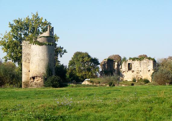 Bár a hátsó kertben a romok már nyugodtan pihennek, a vár tornya alatti pincehelyiségben 8 és 14 év közötti gyerekek csontvázaira bukkantak.