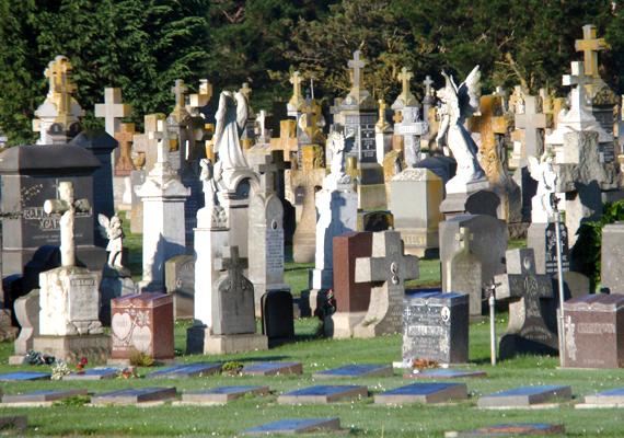 A település mai jellegét egy 1900-as, illetve 1912-es rendeletnek köszönheti. A közeli San Fransiscóban először megtiltották, hogy további temetők épüljenek, majd egy részüket át is helyezték Colmába.