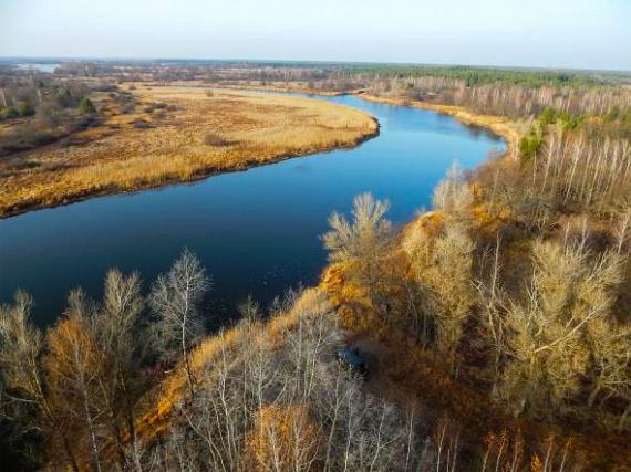 A Pripjaty folyó szeli ketté a csernobili lezárt zónát, és biztosít fontos élőhelyet számos állatfaj számára. Jávorszarvas, őz, hód, baglyok, de barnamedve, hiúz és farkasok is előfordulnak a területen.