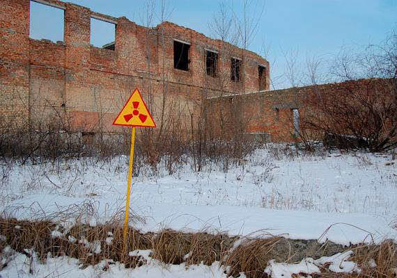A Nemzetközi Atomenergia-ügynökség 56 közvetlen áldozatot tart nyilván: 47 munkást és kilenc pajzsmirigyrák miatt elhunyt gyermeket. Emellett a sugárzással kapcsolatos megbetegedésekkel összefüggő haláleseteket négyezerre becsüli.