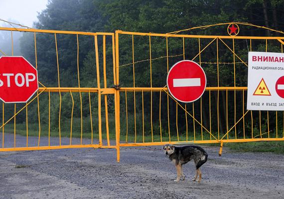 Tábla és lezárt kapu: figyelmeztetés a sugárzásveszélyre.
