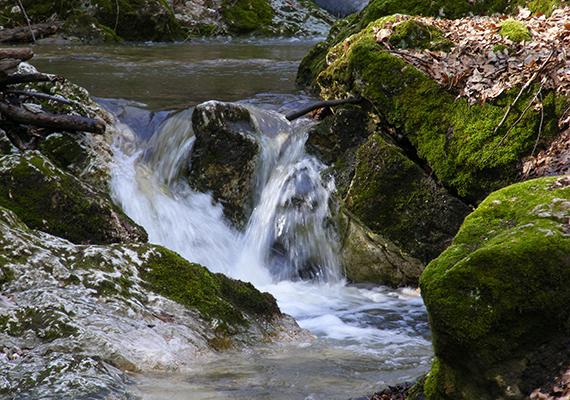 Az ősi mészkőréteg egykor vízszintes volt, a ma megfigyelhető réteg ugyanakkor ferde, ami annak köszönhető, hogy 80-90 millió évvel ezelőtt a hegységképződés során nagyobb darabokra törtek a kőzetelemek, és nagymértékben el is billentek, a szurdok északi falának sziklaalakzata például egy ilyen kibillent réteglap. Mindemellett a völgyre merőlegesen is kialakultak törések. Minderről bővebben ide kattintva olvashatsz!