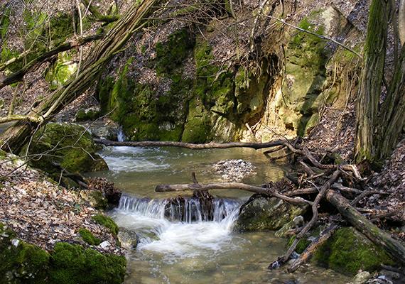 A meredek falú szurdokvölgyet a Dera-patak mélyítette. A patak által kivájt falak a földtörténet iránt érdeklődőknek is igazi kuriózumot jelenthetnek, feltárják ugyanis a triász időszak emlékeit, látható a dachsteini mészkő padja, nyomon követhető a kőzetrétegek mozgása, sőt, még őstengeri kagylómaradvány is fellelhető egyes részein.