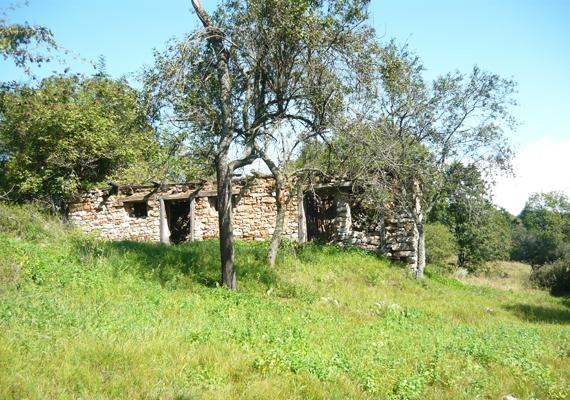 A lakóházakból nem maradt más, csak néhány romos fal.