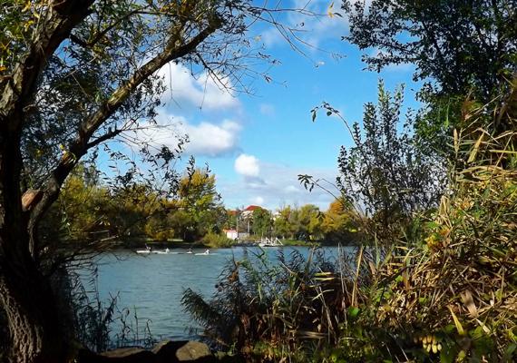 A főváros vonzáskörzetében található a legnagyobb magyar vonatkozású dunai sziget, a Csepel-sziget - bár nem tartozik az alig ismert szigetek közé, szintén tökéletes úti cél. Itt található Szigetszentmiklós, Szigethalom, Ráckeve vagy éppen Halásztelek is, így érintetlennek kevésbé nevezhető a sziget, remek kirándulóhelyek azonban itt is akadnak.
