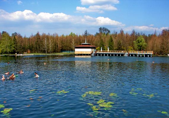 Hévíz az egyik leghíresebb magyar fürdőváros, egyúttal a legrégebbiek közé tartozik: a tó gyógyító hatását valószínűleg már a rómaiak is ismerték.