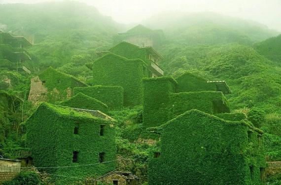 A képen látható, elhagyatott halászfalut Kína partjai mentén hódította vissza a természet. Az egykor virágzó kereskedelmű település látványa mára szívszorító: miután a Jangce torkolatához közeli Gouqi-szigetről elköltöztek lakói, a burjánzó világ gondoskodott arról, hogy a falu többé ne várja vissza őket.