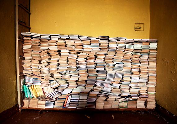A könyvek ironikus módon nem estek a vandálok áldozatául.