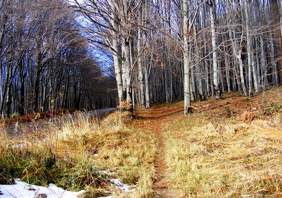 De önmagában is gyönyörű a környező táj késő ősszel, illetve télen.