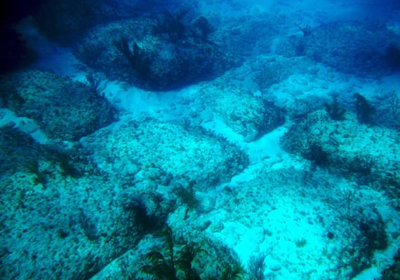 A Bahamák területén található Bimini Roadról azt állítják, hogy Atlantisz nyomait is jelentheti. A mélyen a vízszint alatt fekvő köveket a jelek szerint ember formálhatta meg, talán járdák vagy utak voltak egykor. Kattints ide, és tudj meg róla többet!