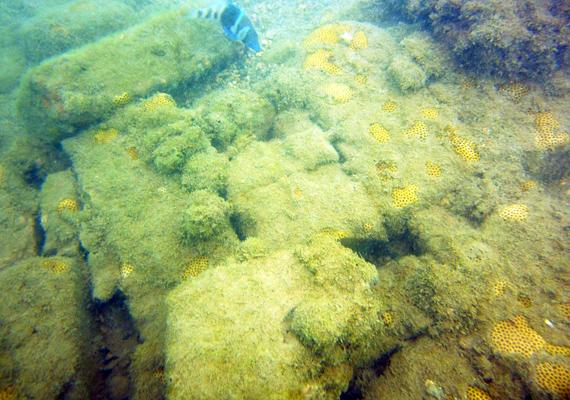 A Jamaica déli partjainál fekvő Port Royal a világ egyik legbűnösebb városaként vonult be a történelembe. A kalózok városa 1692-ben, egy földrengés következtében süllyedt a víz alá. Kattints ide, és ismerd meg jobban!