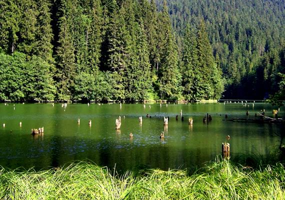 A romániai Gyilkos-tó is eltűnhetne a század végéig a feltételezések szerint, ugyanis jelentős mennyiségű hordalékkal töltődne fel minden évben. Jelenleg ezt hordalékfogó gáttal próbálják megakadályozni.