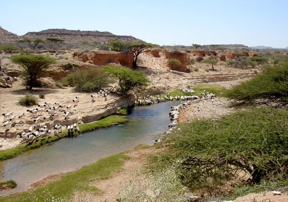 Szomáliában csak 2011-ben négyszáz embert ejtettek túszul, 265-öt még mindig fogva tartanak.