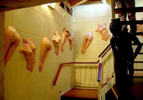 Az amszterdami Szexmúzeum, más néven Vénusz temploma a világ egyik leghíresebb erotikus úti célja. Az 1985-ben megnyitott hely többek között az erotika történetébe enged betekintést.