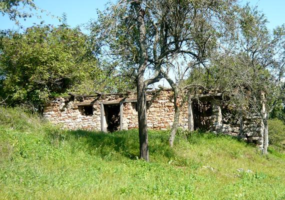 Derenk elnéptelenedése 1943-ban kezdődött meg, mikor Horthy Miklós úgy döntött, vadászterületet hoz létre a környéken. A lebontott házakat és templomot harckocsik szállították el. Kattints ide, és tudj meg többet!