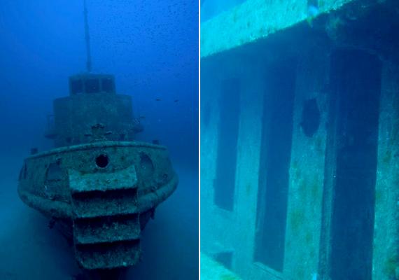 A Rozi nevű hajó arról híres, hogy csaknem eredeti formájában őrződött meg. A máltai roncs kedvelt merülőhelyet jelent.